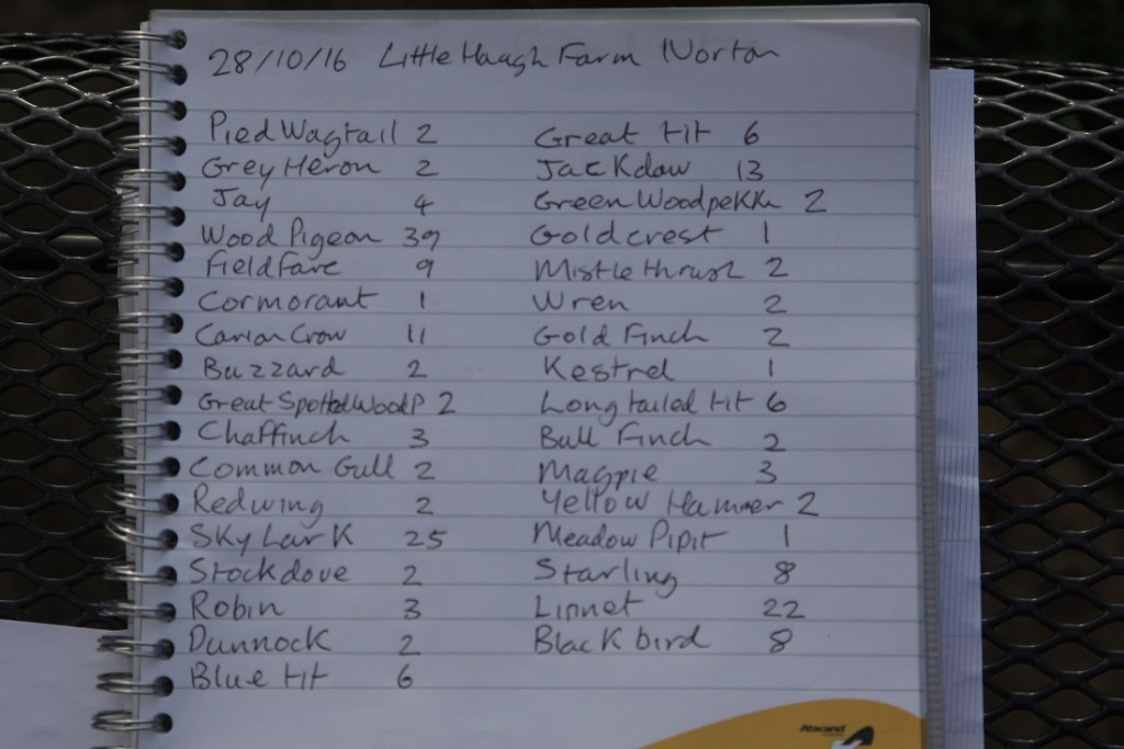 28th Oct 2016 bird count Little Haugh farm Norton
